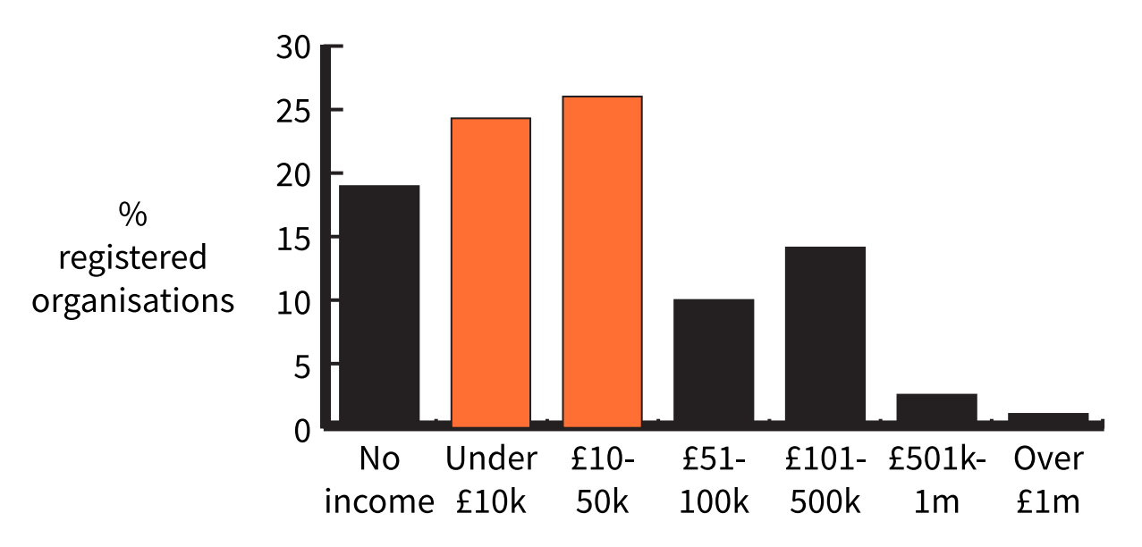 Chart showing the percentage of organisations who interacted their income. From high to low, 10 to 50 k, under 10 k, no income, 101 to 500 k, 51 to 100 k, 501 k to 1 million, over 1 million.